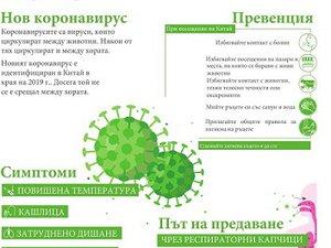 коронавирус репродукция